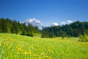 Spa i österrike