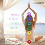 De sju chakran