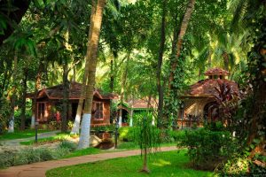 Kairali The Ayurvedic Healing Village Hus