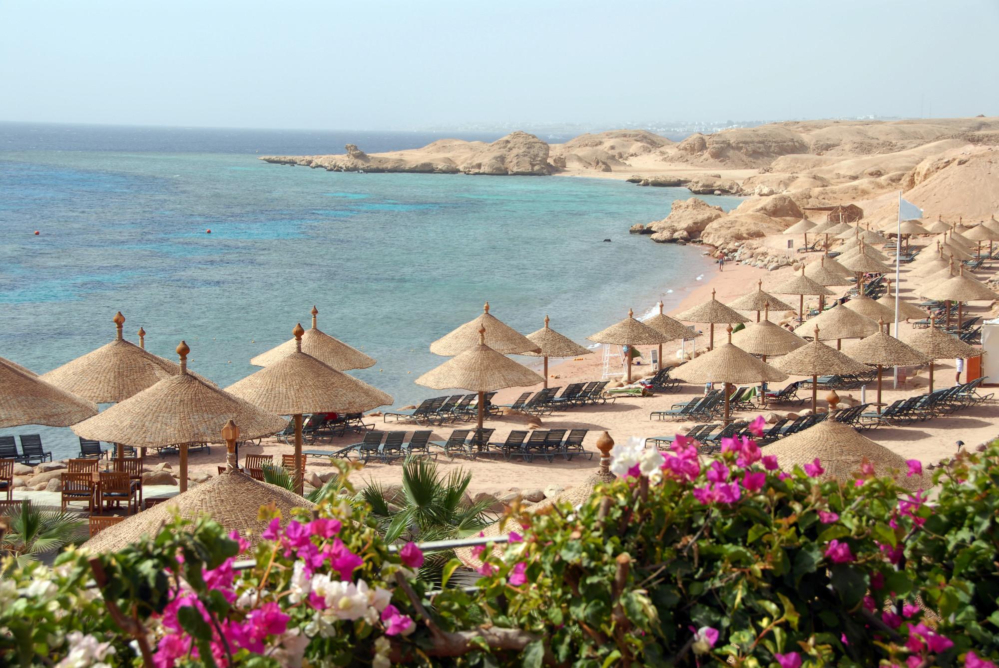 Egypten semester