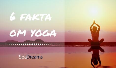 Yoga fakta