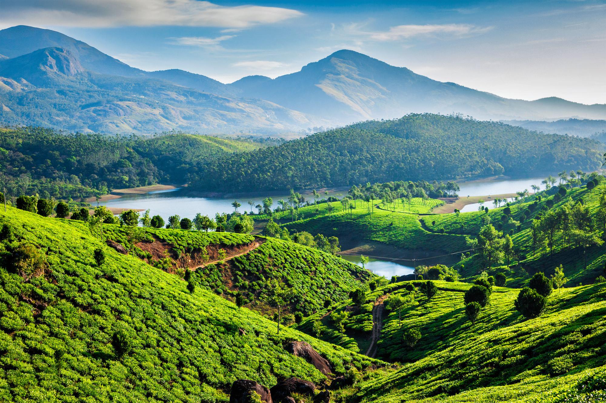 Ayurveda Indien Monsun