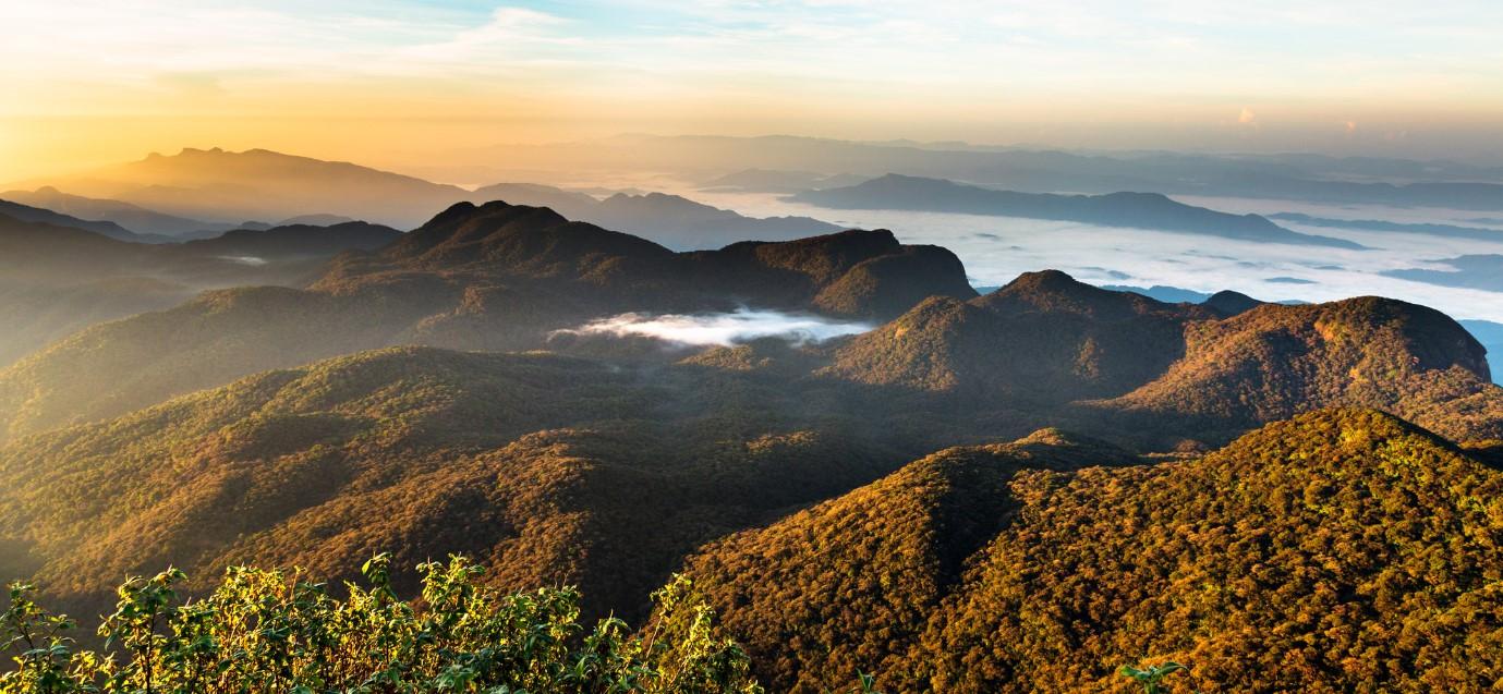 Adams Peak Utsikt