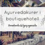 Annorlunda ayurveda – Ayurvedakurer i boutiquehotell