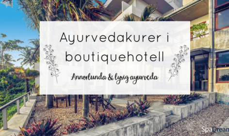 Ayurvedakurer i boutiquehotell